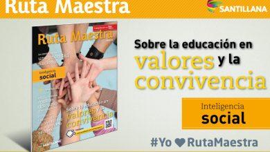Photo of Edición 4 – Sobre la educación en valores y convivencia