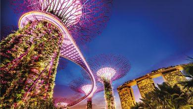 Photo of Educación de calidad en Singapur: logros, retos y oportunidades