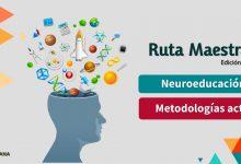 Photo of Edición 25 – Metodologías activas / Neuroeducación