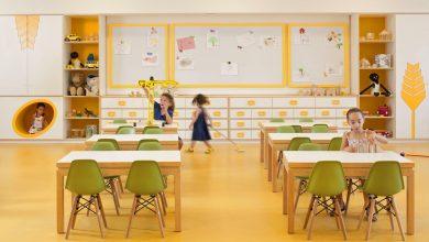 Photo of Los Entornos Personales de Aprendizaje:  Una oportunidad para protagonizar experiencias de aprendizaje diverso, autónomo y creativo