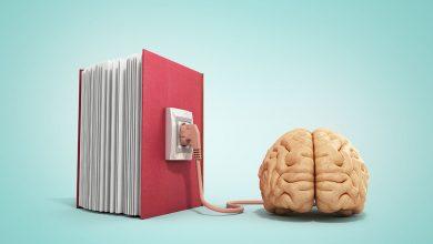 Photo of La neuroeducación y su aportación al docente
