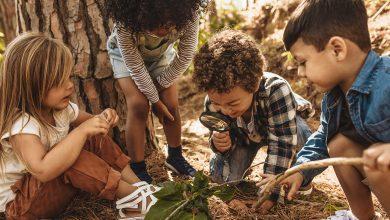 Photo of Conectados a la Tierra desde pequeños